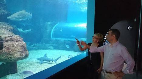 El Aquarium presenta la nueva temporada turística con su situación financiera estabilizada