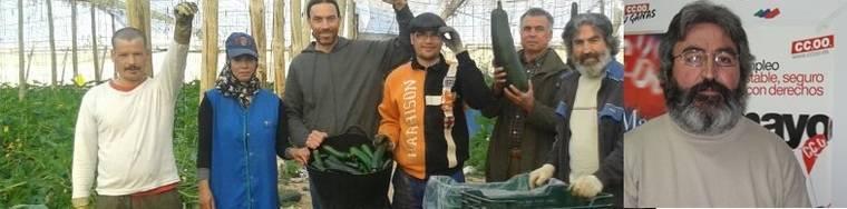 El Sindicato de Obreros del Campo puso a un pescador de CCOO al frente de la finca agrícola ocupada de Simón Sabio