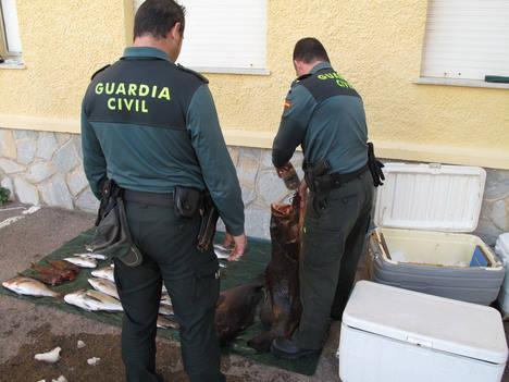 La Guardia Civil sorprende a dos furtivos cuando descargaban sus capturas en la playa del embarcadero de Los Escullos