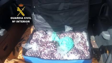 Detenido con 32 bolsas con un total de 3165 bellotas de hachís