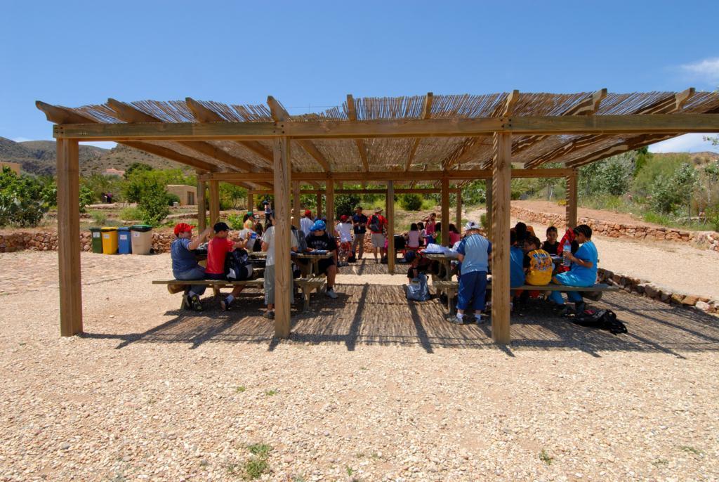 Talleres juegos y visitas en el jard n bot nico el for Jardin botanico almeria