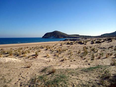 Los Genoveses es elegida por los seguidores de Antena3 como la mejor playa de España