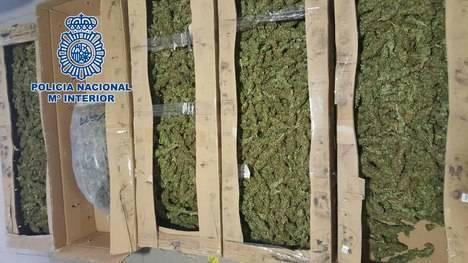 La Policía Nacional detiene a un hombre que transportaba más de once kilos de cogollos de marihuana