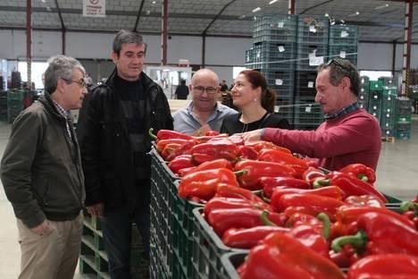 """Carmen Crespo: """"Rajoy es el único candidato capaz de proteger los intereses de nuestros agricultores"""""""