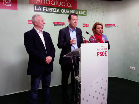 El PSOE de Almería pedirá al Congreso mejoras en el tren a Madrid y que se retomen el AVE y la desaladora de Cuevas