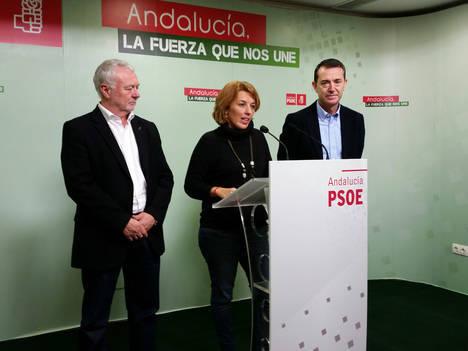 Los socialistas almerienses defenderán los intereses de la provincia en las comisiones de Fomento y Agricultura