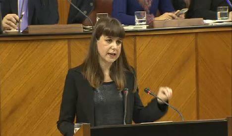 Ayala rechaza que la Ley de Memoria Histórica se enmarque en la Consejería de Cultura