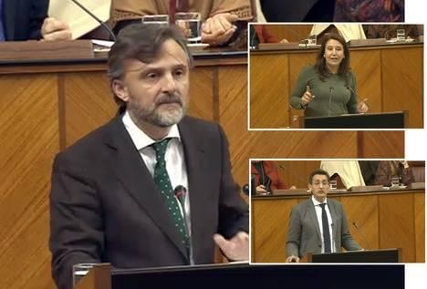 Todos señalan al PSOE como responsable del hotel Algarrobico