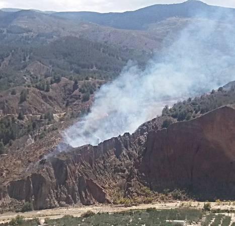 Estabilizado un incendio declarado en Purchena