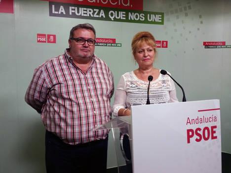 El PSOE reclama a Ciudadanos que deje de sostener a Amat