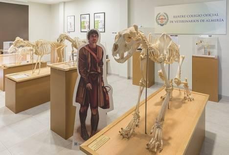 Termina la exposición de 'Anatomía veterinaria; Arte y ciencia'