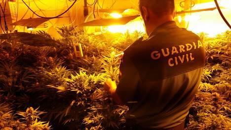 El aire acondicionado en una casa abandonada de Rioja desvela una plantación de marihuana indoor