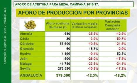 Baja el 35,5% la producción de aceituna en Almería en 5 años