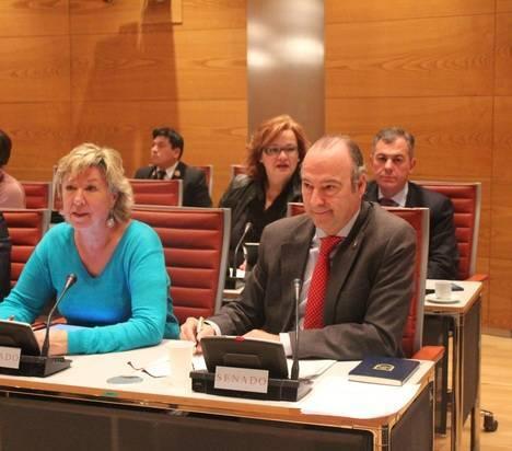Luis Rogelio defiende en el Senado el fortalecimiento del sistema de alianzas internacionales en materia de Defensa
