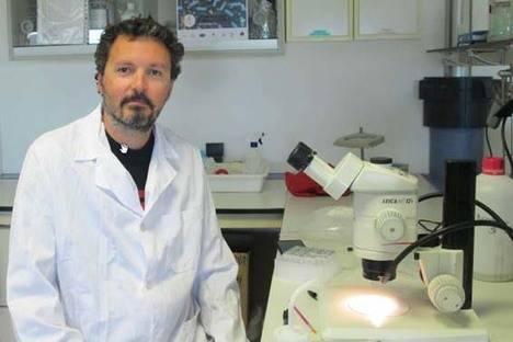 """""""¿Vivimos en un mundo dominado por bacterias?"""" cierra el II Ciclo de CIENCIAjazz el 20 de abril"""