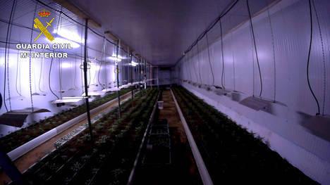 Desmantelada en Níjar la mayor plantación indoor de marihuana de los últimos años