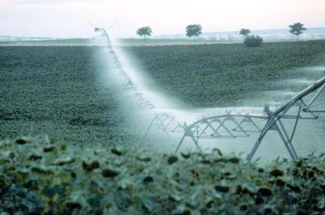 Agricultura impulsará la mejora de los regadíos con 96,1 millones de euros