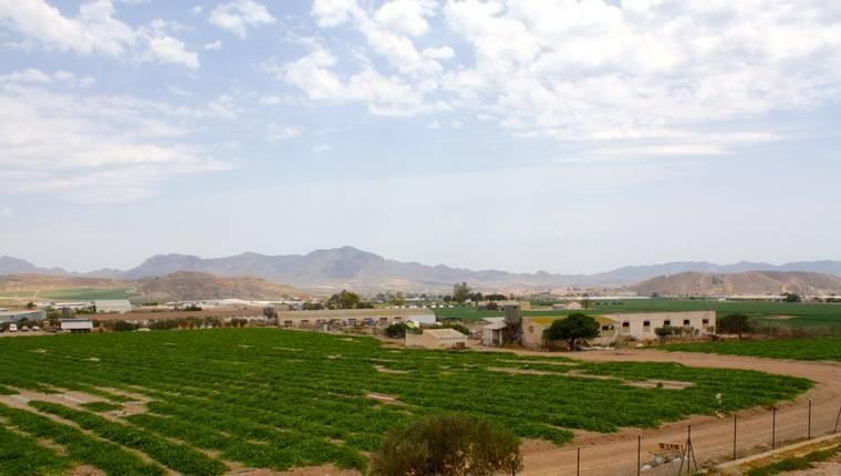 19.000 hectáreas sin agua en el Levante