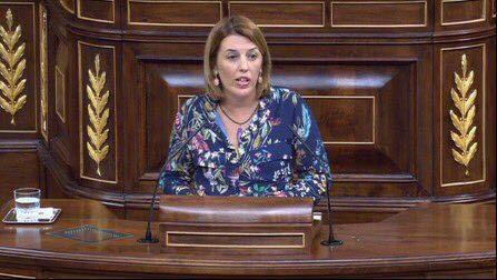 PSOE reclama una Ley integral y una estrategia contra la violencia hacia la infancia