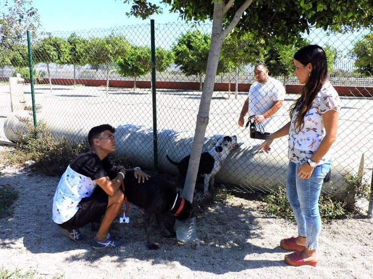 Parque canino delAndarax abandonado