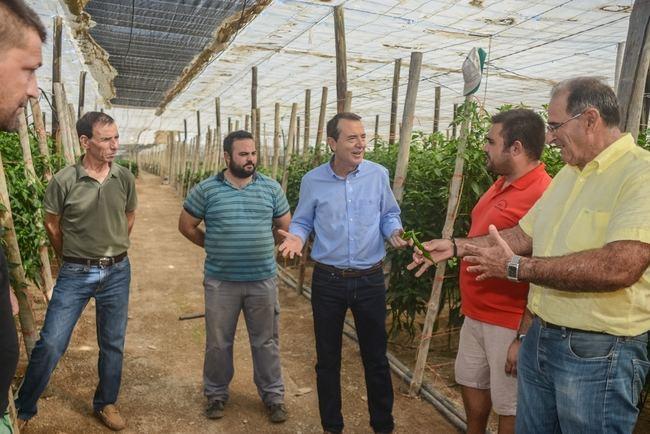 Pérez Navas ofrece su candidatura a los agricultores