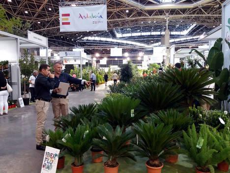 Almería lidera la exportación de flores en Andalucía