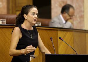 La Junta implica en la rehabilitación del Castillo de Vélez Blanco al CTAP que está en concurso de acreedores
