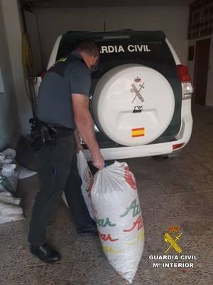 Cuatro detenidos por robar 750 kilos de almendra en el Alto Almanzora