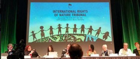 Sentencia del Tribunal Internacional por los Derechos de la Naturaleza contra la sobreexplotación del Acuífero Aguas