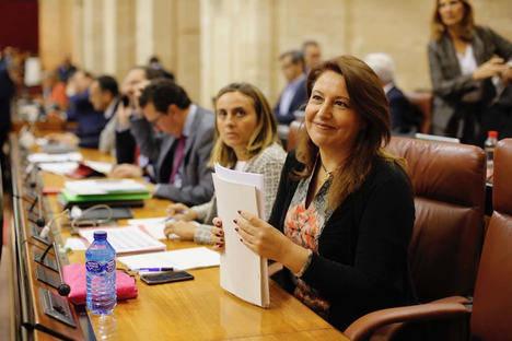 Partido Popular pide cubrir al 100% los permisos de maternidad