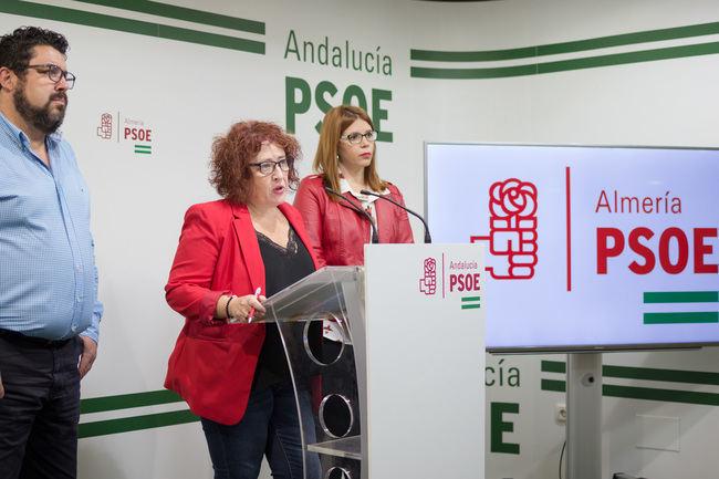 PSOE registra mociones para mostrar su firme compromiso con las víctimas de violencia machista