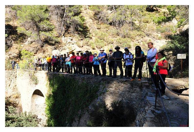 Diputación acerca a un centenar de senderistas el entorno natural de Arboleas y Laujar