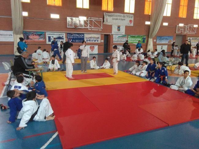 Vícar acoge los Encuentros Educativos de Promoción del Judo de Diputación