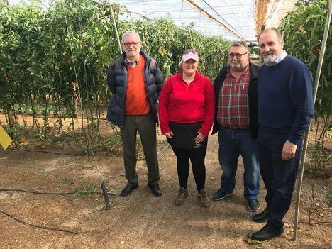 Ayudas para dos empresas agrícolas de Roquetas