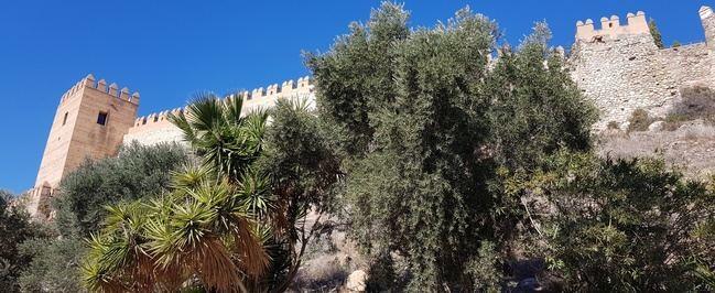 El Ayuntamiento de Almería aboga por un cambio en el modelo de gestión del conjunto monumental de la Alcazaba