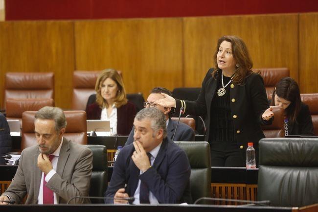 """Crespo: """"El Hospital La Inmaculada es ejemplo de la sanidad a la fuga en Andalucia"""""""