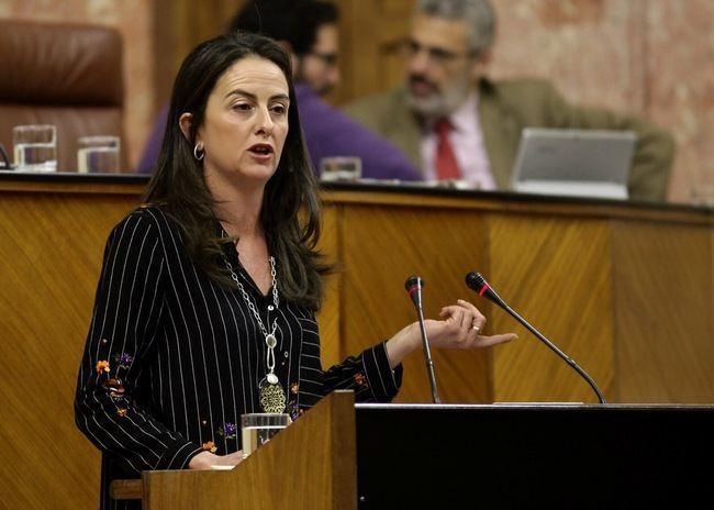 El PSOE rechaza un Pacto Andaluz por el Agua y vuelve a castigar a la provincia de Almería