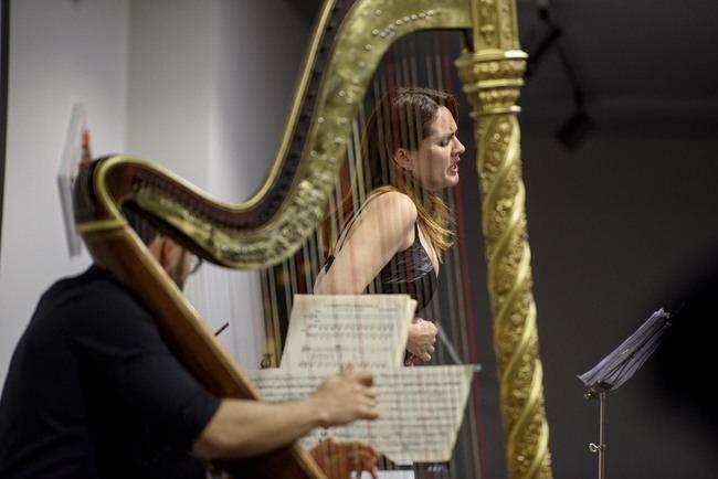 Arpa y voz se fusionan en el último concierto de la OCAL
