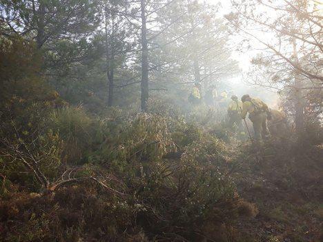 El primer incendio forestal del año en Almería arrasa 10 hectáreas en Felix