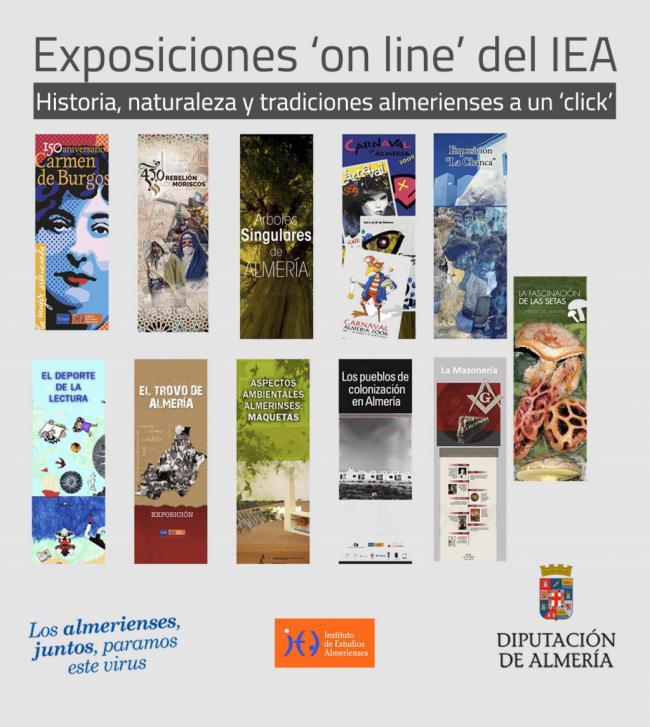 El IEA habilita la visita virtual a sus 11 exposiciones durante el #COVID19
