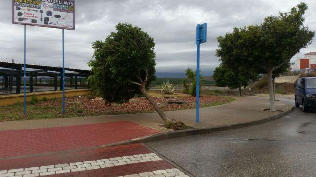 Aviso naranja por viento en Almería este domingo