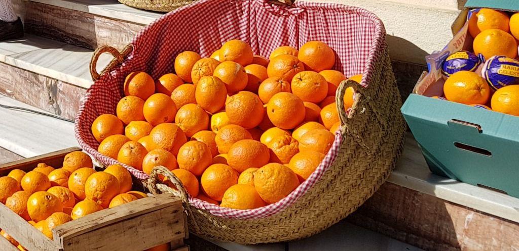 La Junta difunde la excelencia de la 'Naranja de Andalucía'
