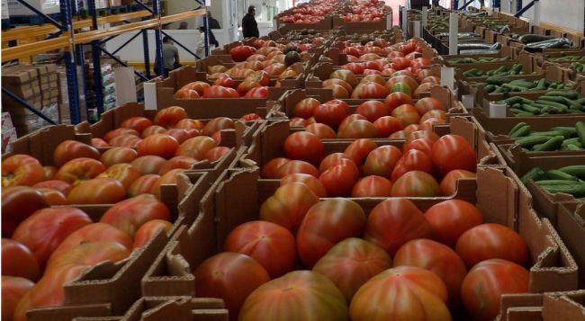 La Unión Europea refuerza la protección para la del Tomate de la Cañada