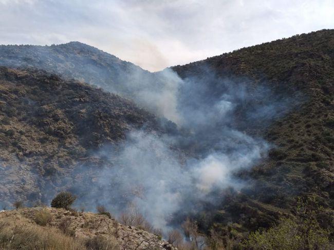 La UAL participa en un estudio sobre los incendios forestales y los suelos