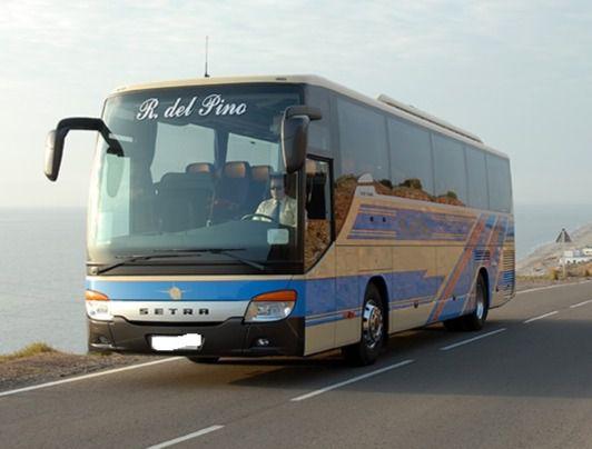 Anulan el bus lanzadera por el cierre del Cañarete