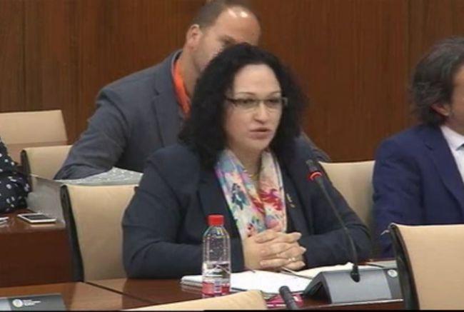 Luz Belinda rechaza una moción parlamentaria que atribuye el flamenco a los gitanos