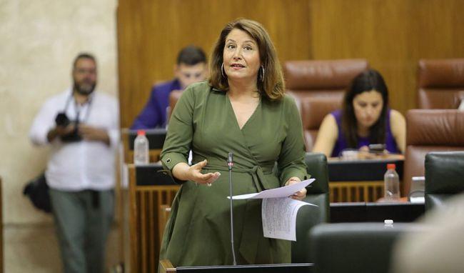 La Junta quiere transmitir tranquilidad a los solicitantes de la PAC