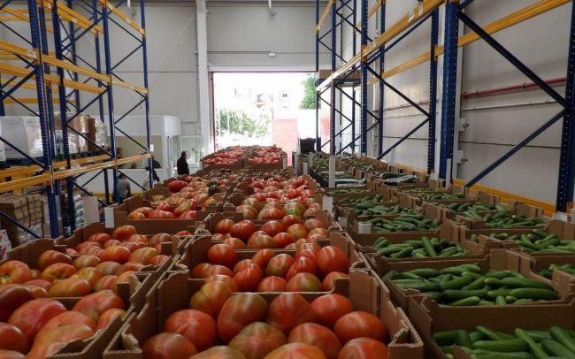 """Hernando (PP): """"Almería va a ser la exportadora de salud a Europa"""""""