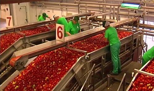 CSIF pide protección inmediata para personal del manipulado de alimentos