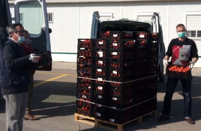 Igualdad reparte en residencias 3.000 kg de tomates donados por FADEMUR